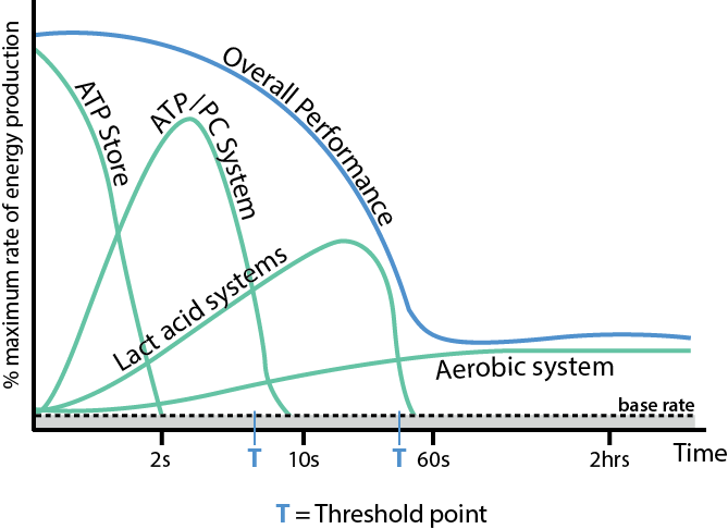 Unit 2 - Energy Systems and their application to training